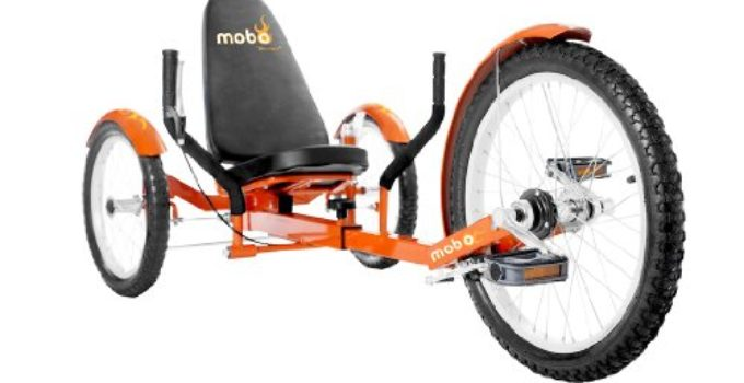 bici Mobo Triton Pro